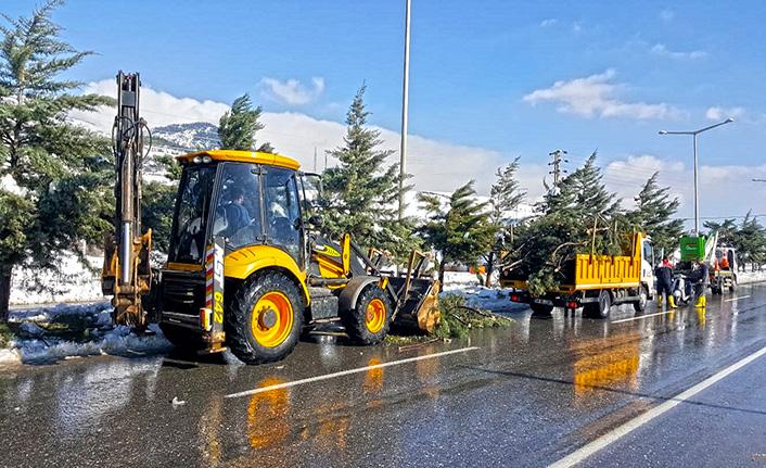 Kar yağışı nedeniyle ağaçların dalları kırıldı