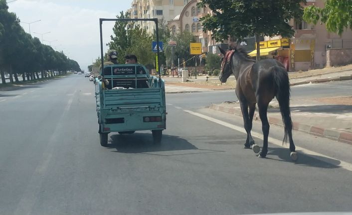 Motosikletle at çekenlere ceza
