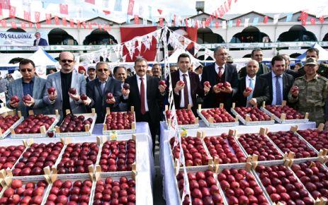 GÖKSUN'DA 6. ELMA FESTİVALİ DÜZENLENDİ