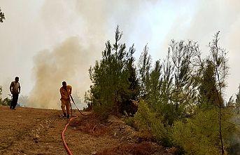 Kahramanmaraş'ta ikinci orman yangını