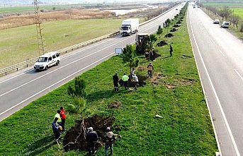 Türkoğlu Belediyesi fidanları toprakla buluşturuyor