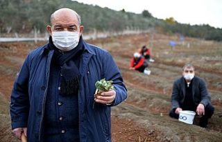 Mado'dan çiftçiyi özel proje