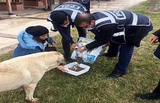 Polisten sokak hayvanları mama ve yem bıraktı