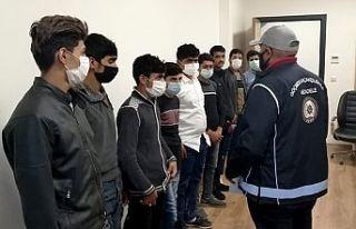 13 kaçak göçmen yakalandı