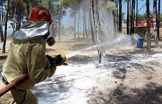 Orman Bölge ekiplerinden yangın tatbikatı