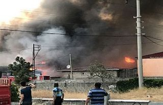 Yangın nedeniyle şehri dumansardı