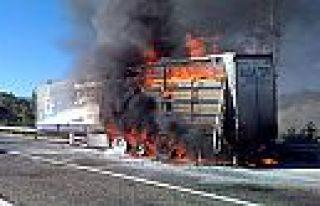 Kahramanmaraş'ta seyir halindeki tır yandı