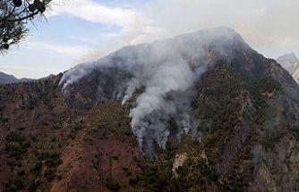 Yıldırım düşmesi sonucu orman yangını